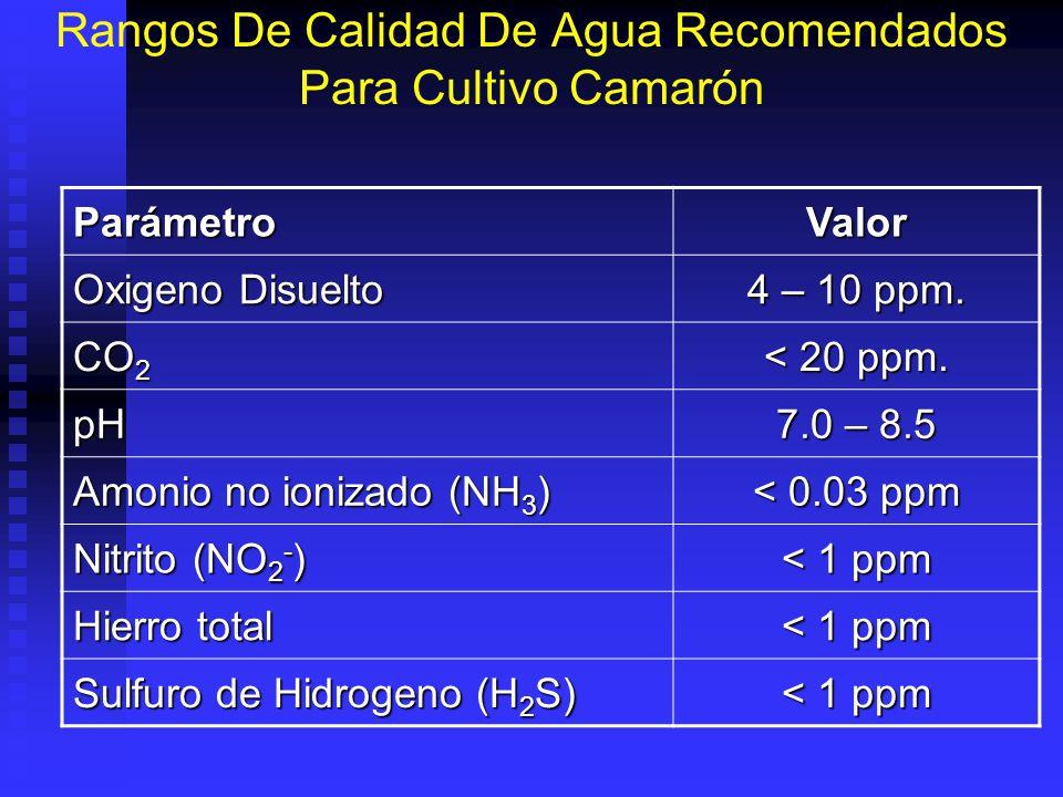Rangos De Calidad De Agua Recomendados Para Cultivo Camarón ParámetroValor Oxigeno Disuelto 4 – 10 ppm.