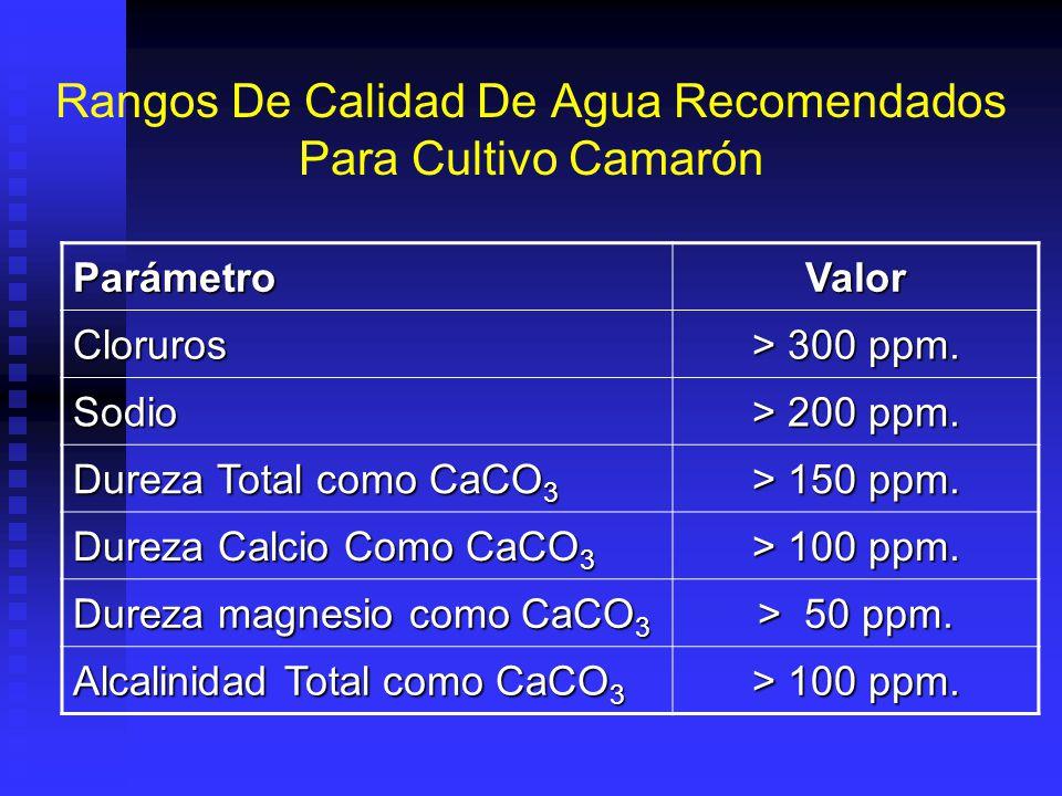 Rangos De Calidad De Agua Recomendados Para Cultivo Camarón ParámetroValor Oxigeno Disuelto 4 – 10 ppm. CO 2 < 20 ppm. pH 7.0 – 8.5 Amonio no ionizado