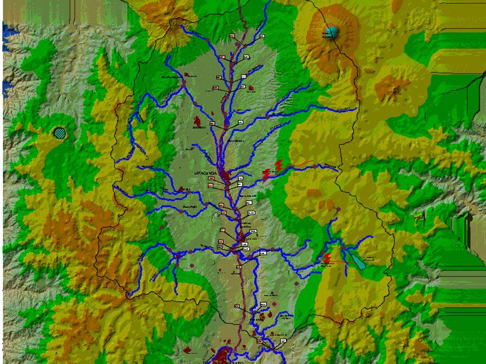 DIAGNOSTICO DE LA SITUACION Riego - área con infraestructura de riego 40.000 ha: 11.000 ha.