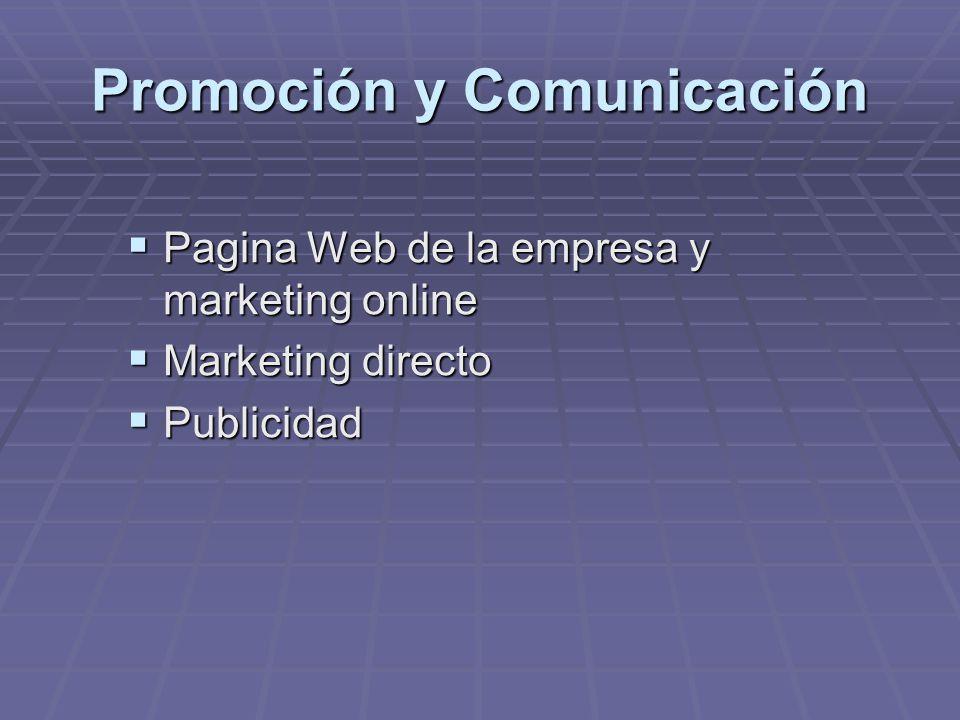 Promoción y Comunicación Pagina Web de la empresa y marketing online Pagina Web de la empresa y marketing online Marketing directo Marketing directo P