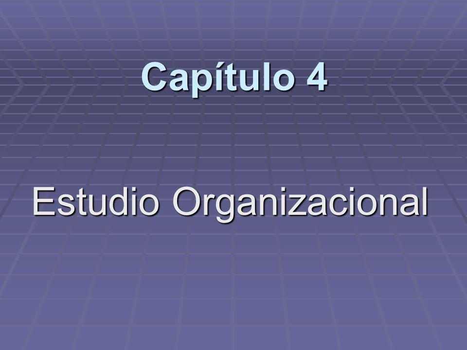 Capítulo 4 Estudio Organizacional