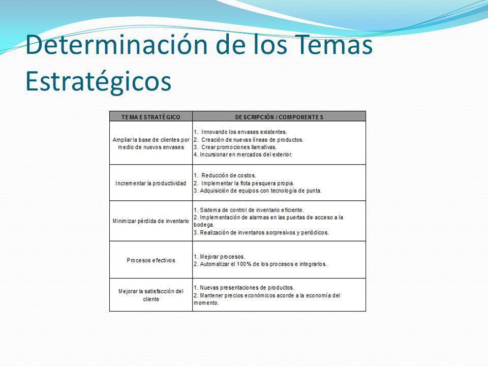 Determinación de los Temas Estratégicos