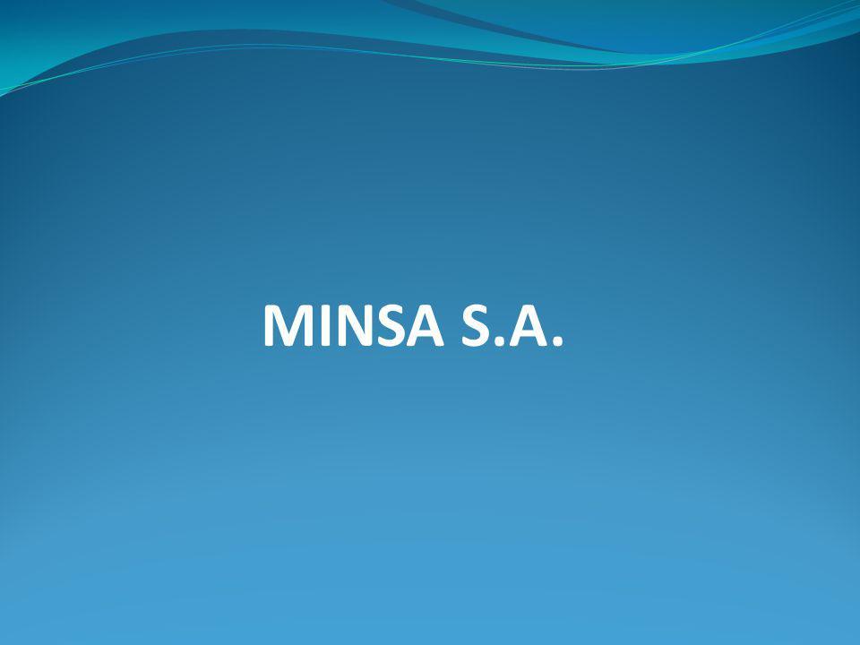 MINSA S.A.
