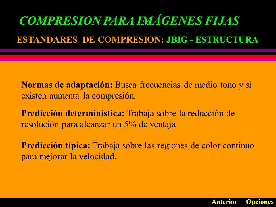 COMPRESION PARA IMÁGENES FIJAS ESTANDARES DE COMPRESION: ESTANDARES DE COMPRESION: JBIG - ESTRUCTURA Anterior Opciones Siguiente IDID I D-1 CDCD C0C0 Predicción Típica Predicción Determin.