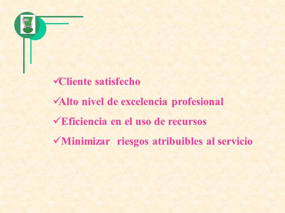 Cliente satisfecho Alto nivel de excelencia profesional Eficiencia en el uso de recursos Minimizar riesgos atribuibles al servicio