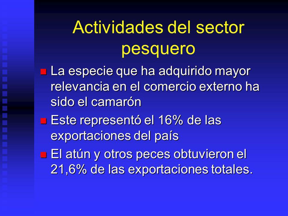 Actividades del sector pesquero La especie que ha adquirido mayor relevancia en el comercio externo ha sido el camarón La especie que ha adquirido may