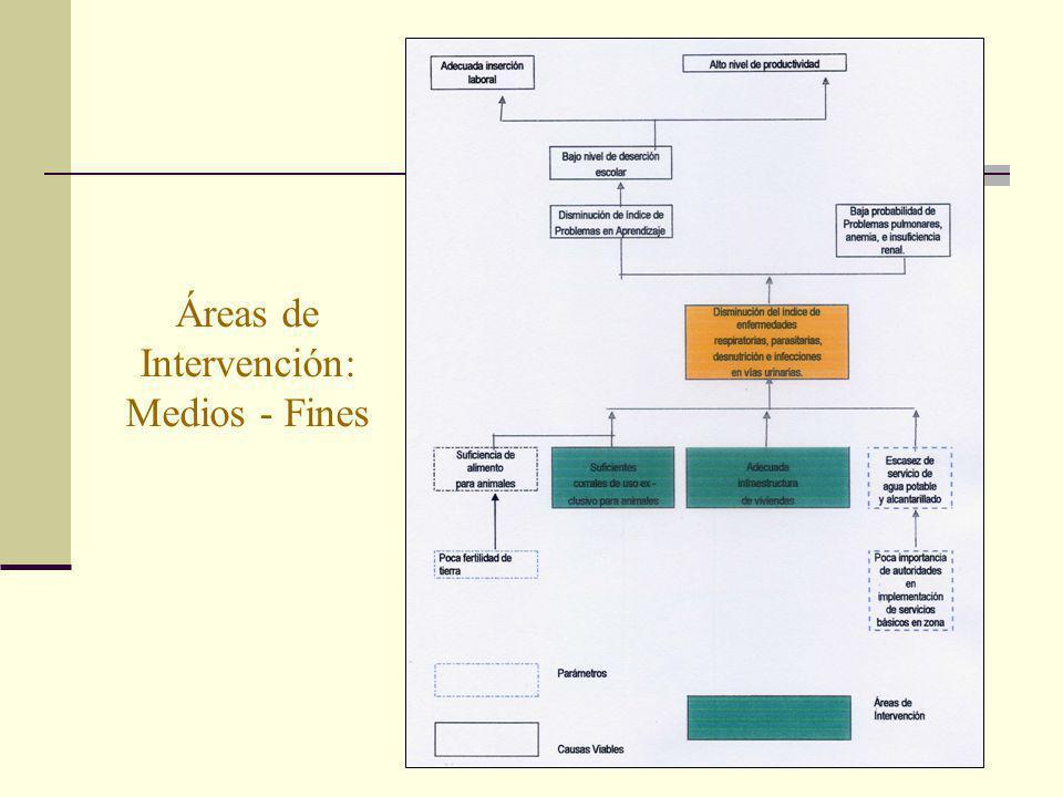 Áreas de Intervención: Medios - Fines
