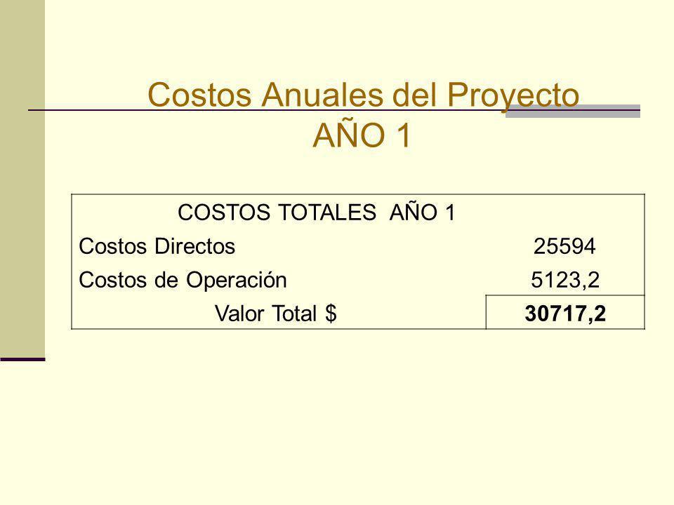 Costos Anuales del Proyecto AÑO 1 COSTOS TOTALES AÑO 1 Costos Directos25594 Costos de Operación5123,2 Valor Total $30717,2