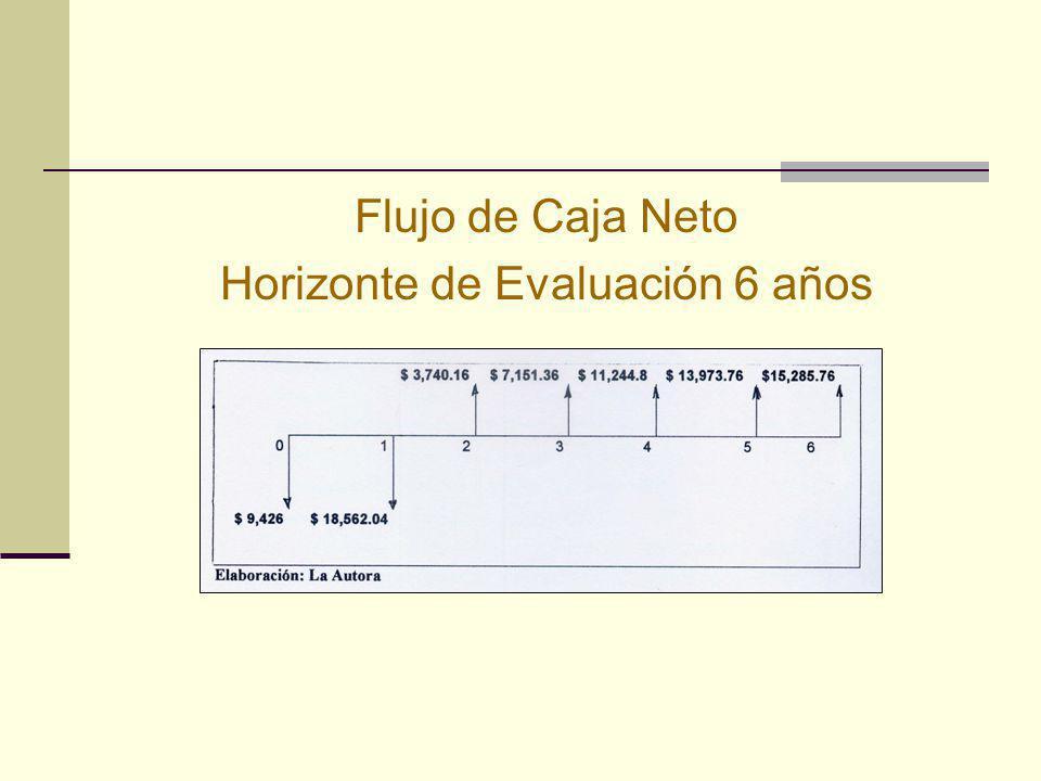 Flujo de Caja Neto Horizonte de Evaluación 6 años