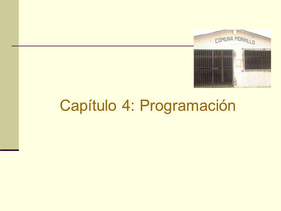 Capítulo 4: Programación