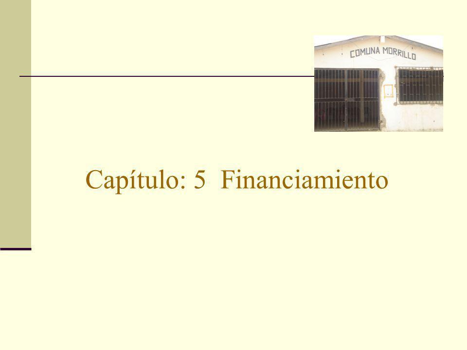 Capítulo: 5 Financiamiento