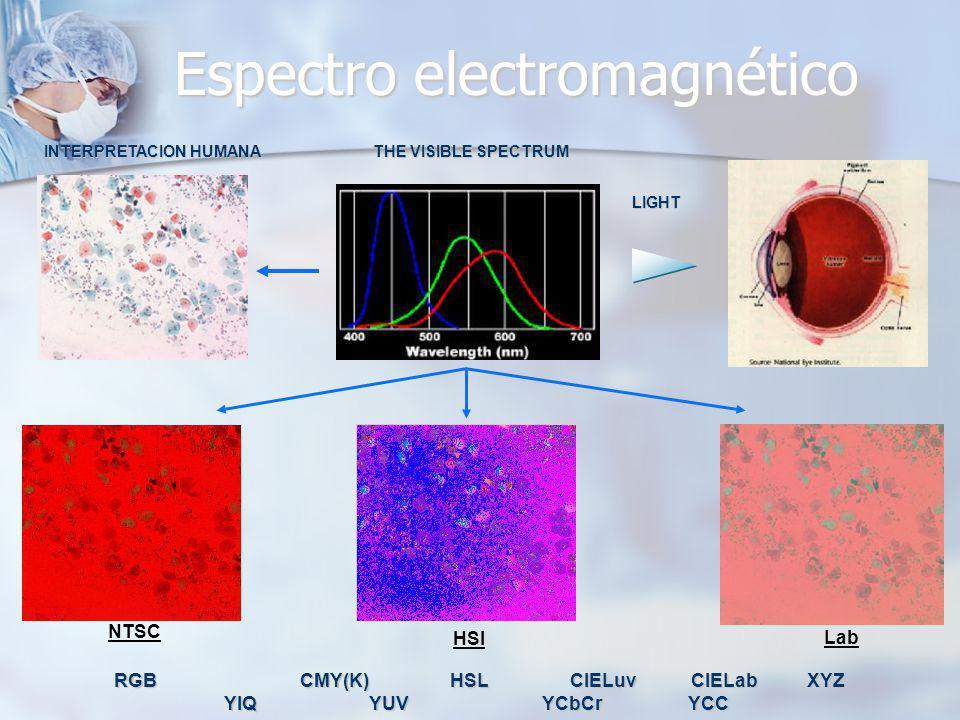 Espectro electromagnético THE VISIBLE SPECTRUM LIGHT INTERPRETACION HUMANA NTSC HSI Lab RGB CMY(K) HSL CIELuv CIELab XYZ YIQ YUV YCbCr YCC RGB CMY(K)
