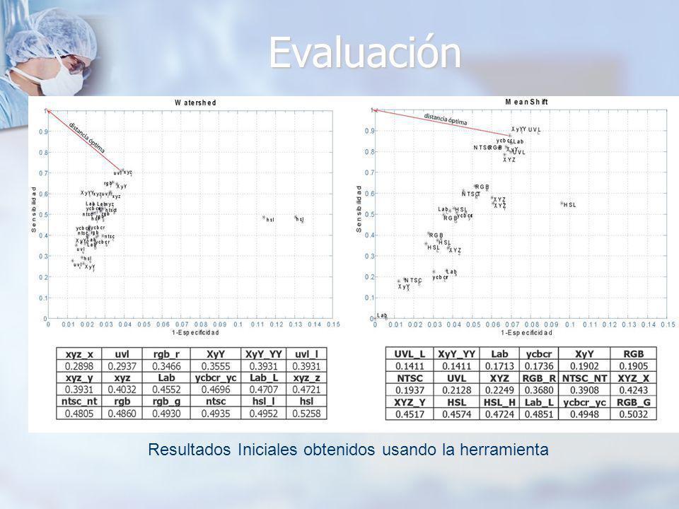 Evaluación Resultados Iniciales obtenidos usando la herramienta
