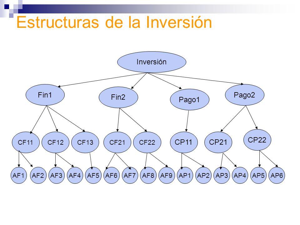 Estructuras de la Inversión Inversión Fin1 CF11 Fin2 Pago1 Pago2 CF12CF13CF21CF22 CP11CP21 CP22 AF1AF2AF3AF4AF5AF6AF7AF8AF9AP1AP2AP3AP6AP5AP4