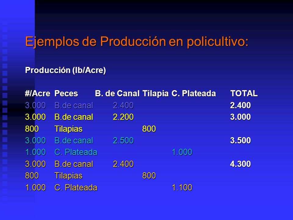 Ejemplos de Producción en policultivo: Producción (lb/Acre) #/AcrePeces B.