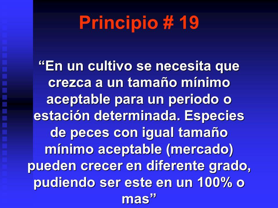 Principio # 19 En un cultivo se necesita que crezca a un tamaño mínimo aceptable para un periodo o estación determinada.