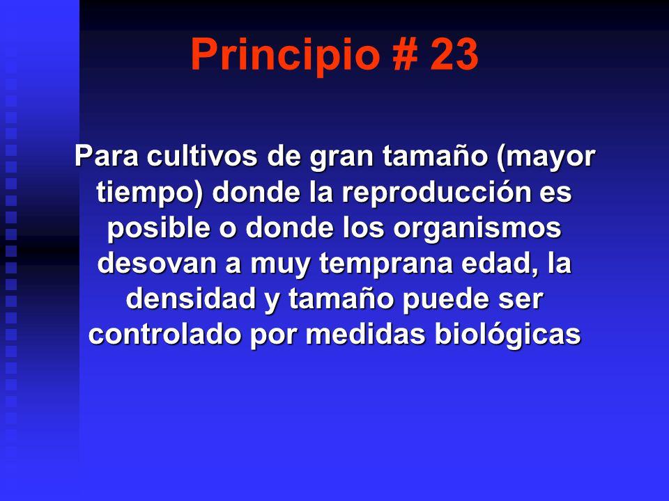 Principio # 23 Para cultivos de gran tamaño (mayor tiempo) donde la reproducción es posible o donde los organismos desovan a muy temprana edad, la densidad y tamaño puede ser controlado por medidas biológicas