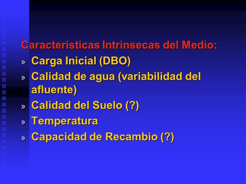 Caracteristicas Intrinsecas del Medio: » Carga Inicial (DBO) » Calidad de agua (variabilidad del afluente) » Calidad del Suelo (?) » Temperatura » Capacidad de Recambio (?)