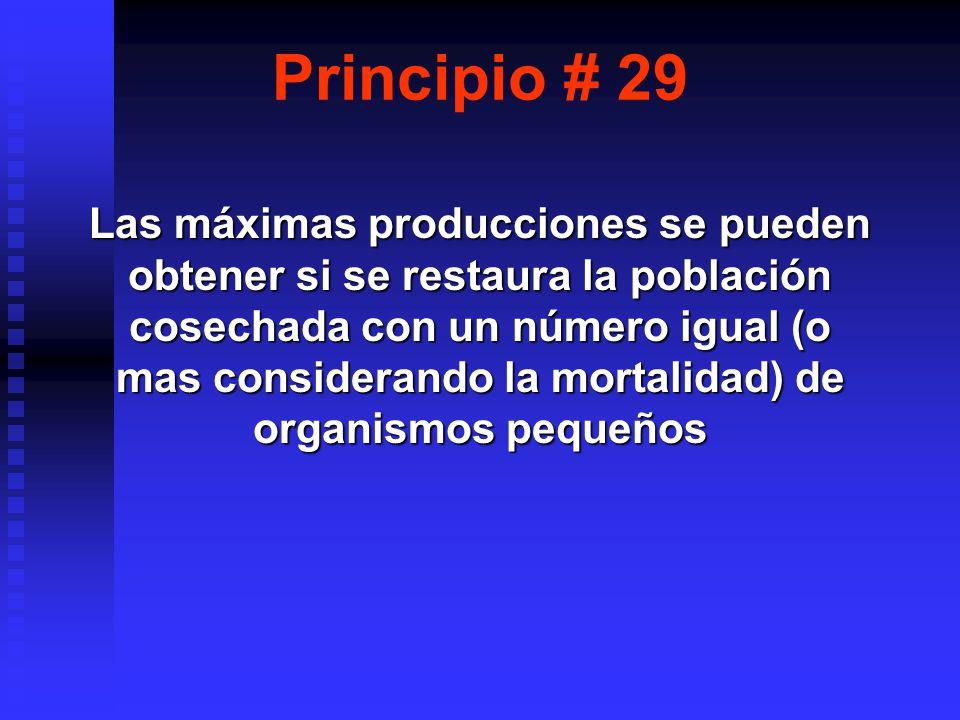 Principio # 29 Las máximas producciones se pueden obtener si se restaura la población cosechada con un número igual (o mas considerando la mortalidad) de organismos pequeños