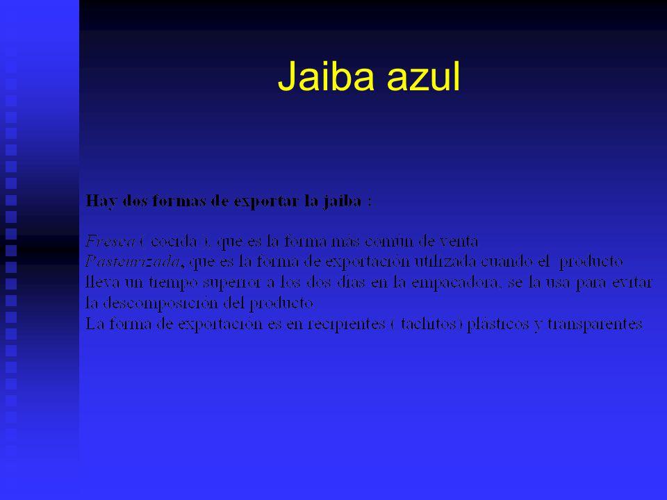Jaiba azul