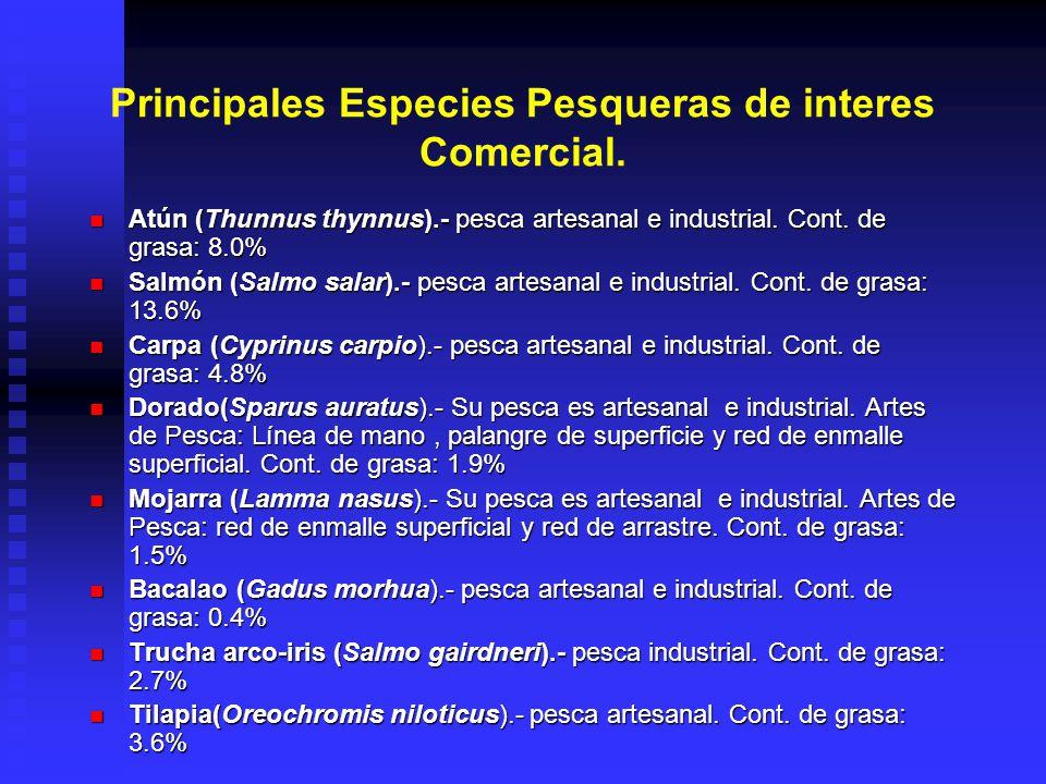 Principales Especies Pesqueras de interes Comercial. Atún (Thunnus thynnus).- pesca artesanal e industrial. Cont. de grasa: 8.0% Atún (Thunnus thynnus