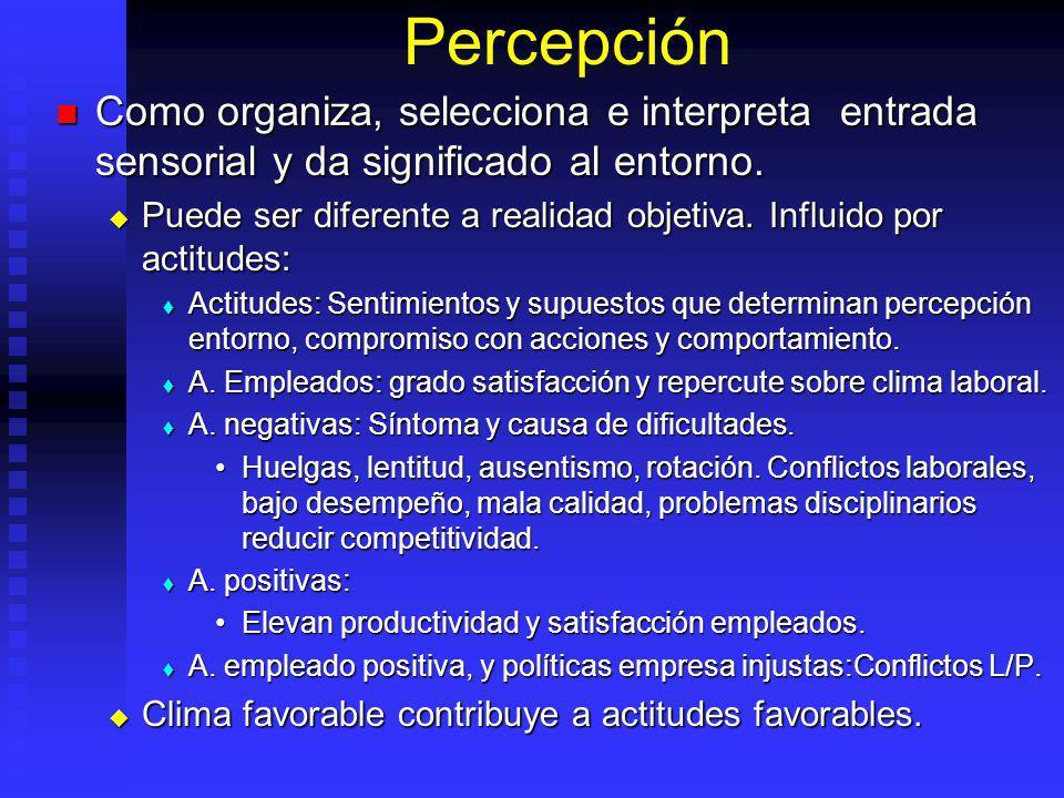 Percepción Como organiza, selecciona e interpreta entrada sensorial y da significado al entorno. Como organiza, selecciona e interpreta entrada sensor