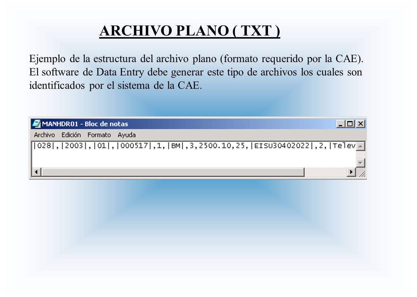 ARCHIVO PLANO ( TXT ) Ejemplo de la estructura del archivo plano (formato requerido por la CAE). El software de Data Entry debe generar este tipo de a