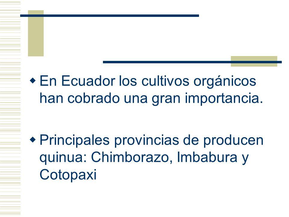 En Ecuador los cultivos orgánicos han cobrado una gran importancia. Principales provincias de producen quinua: Chimborazo, Imbabura y Cotopaxi