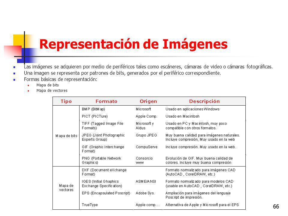 66 Representación de Imágenes Las imágenes se adquieren por medio de periféricos tales como escáneres, cámaras de video o cámaras fotográficas.