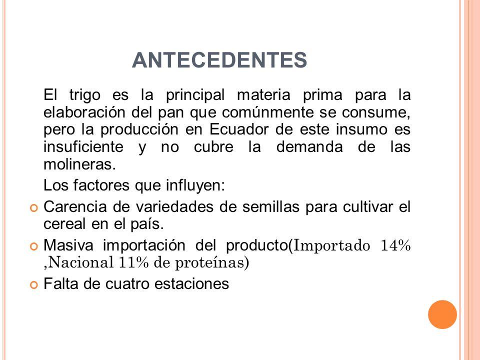 ANTECEDENTES El trigo es la principal materia prima para la elaboración del pan que comúnmente se consume, pero la producción en Ecuador de este insum