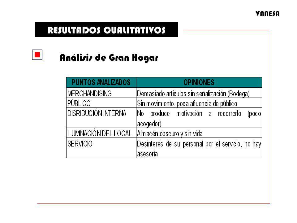 RESULTADOS CUALITATIVOS Análisis de Gran Hogar VANESA