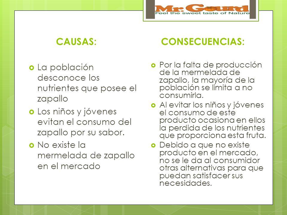 CAUSAS: La población desconoce los nutrientes que posee el zapallo Los niños y jóvenes evitan el consumo del zapallo por su sabor.