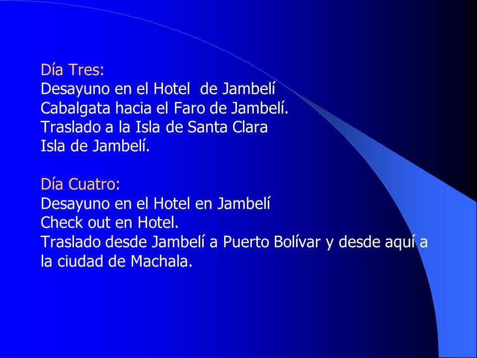 Día Tres: Desayuno en el Hotel de Jambelí Cabalgata hacia el Faro de Jambelí.