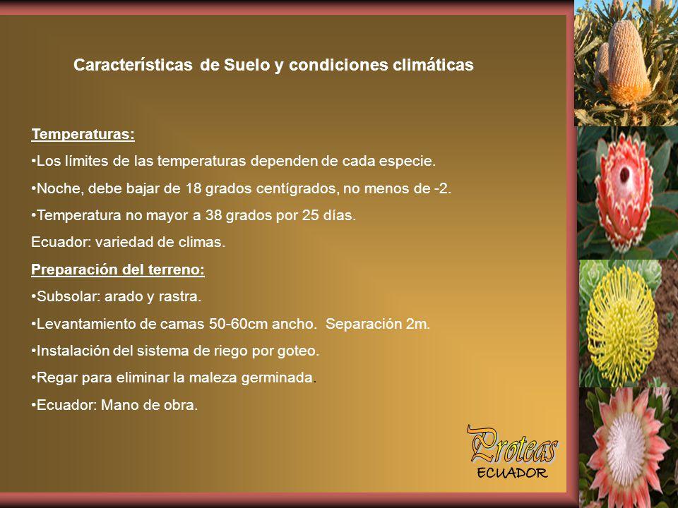 Características de Suelo y condiciones climáticas Temperaturas: Los límites de las temperaturas dependen de cada especie.