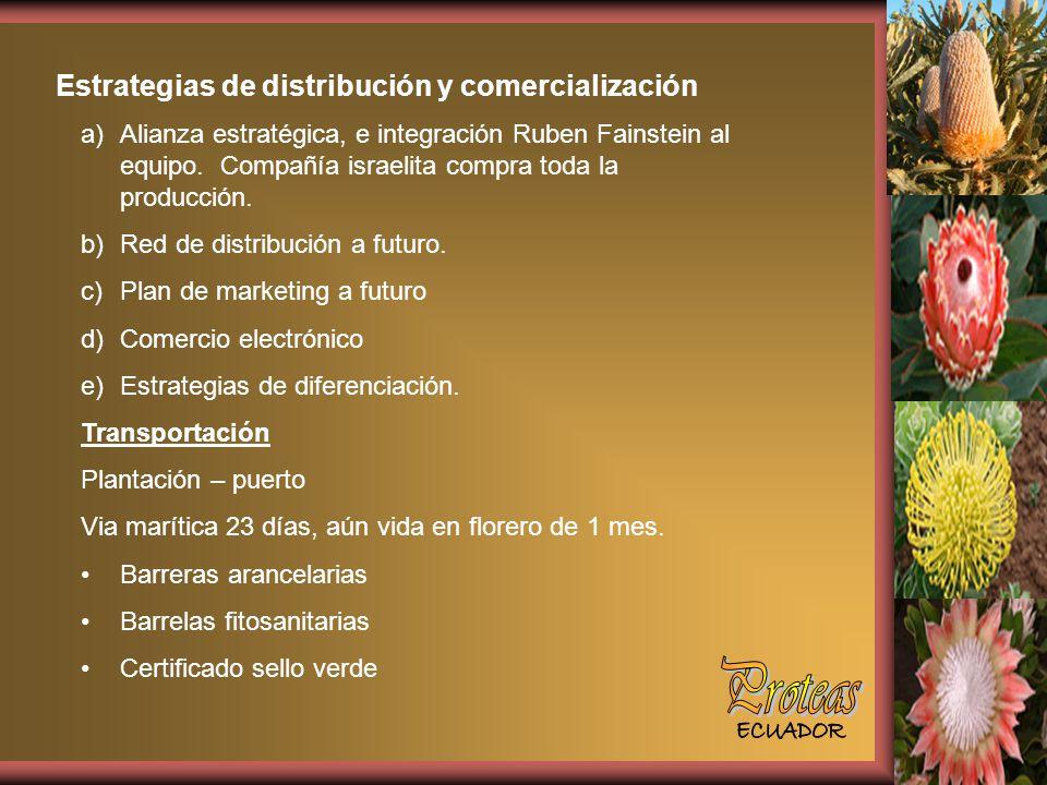Estrategias de distribución y comercialización a)Alianza estratégica, e integración Ruben Fainstein al equipo.