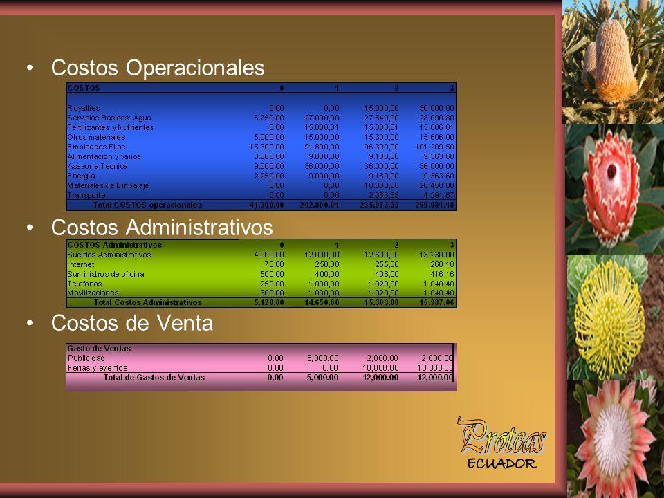 Costos Operacionales Costos Administrativos Costos de Venta