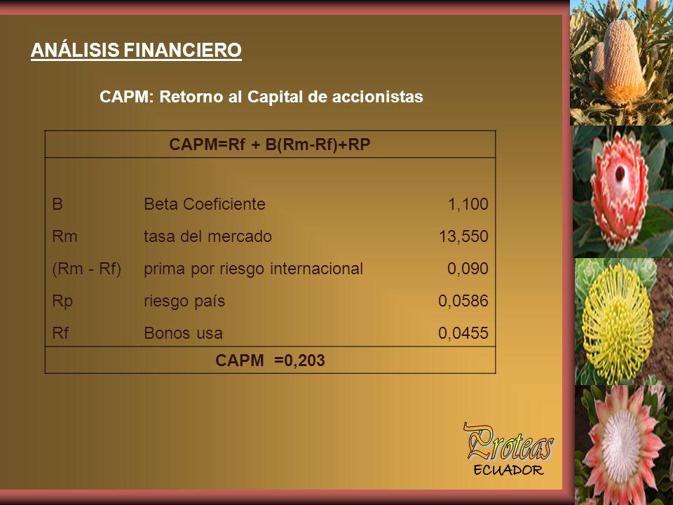 ANÁLISIS FINANCIERO CAPM: Retorno al Capital de accionistas CAPM=Rf + B(Rm-Rf)+RP BBeta Coeficiente1,100 Rmtasa del mercado13,550 (Rm - Rf)prima por riesgo internacional0,090 Rpriesgo país0,0586 RfBonos usa0,0455 CAPM =0,203