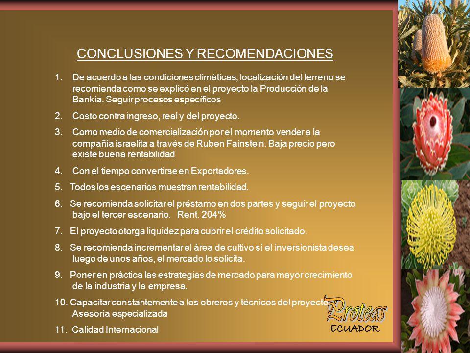 CONCLUSIONES Y RECOMENDACIONES 1.De acuerdo a las condiciones climáticas, localización del terreno se recomienda como se explicó en el proyecto la Producción de la Bankia.