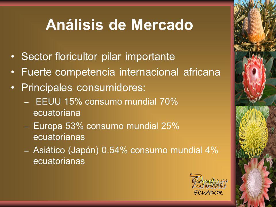 Sector floricultor pilar importante Fuerte competencia internacional africana Principales consumidores: – EEUU 15% consumo mundial 70% ecuatoriana – Europa 53% consumo mundial 25% ecuatorianas – Asiático (Japón) 0.54% consumo mundial 4% ecuatorianas