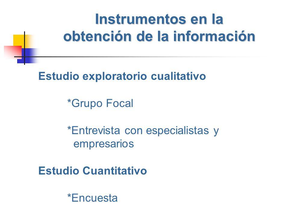 Instrumentos en la obtención de la información Estudio exploratorio cualitativo *Grupo Focal *Entrevista con especialistas y empresarios Estudio Cuant