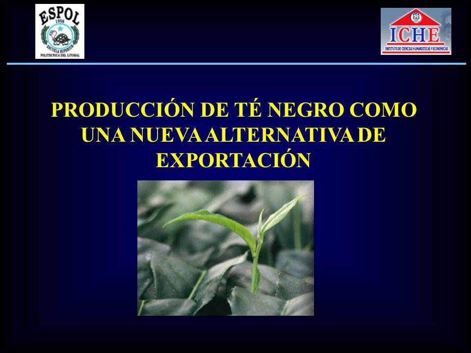 Demanda Internacional para el té negro ecuatoriano Fuente: Banco Central del Ecuador Elaborado por: Los Autores