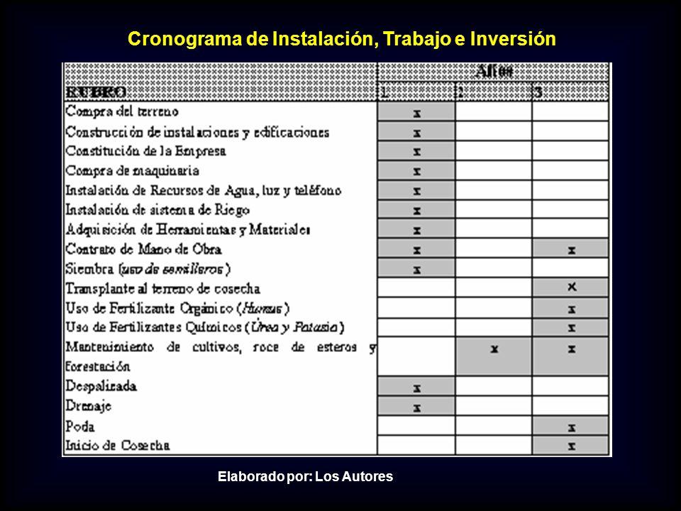 Cronograma de Instalación, Trabajo e Inversión Elaborado por: Los Autores