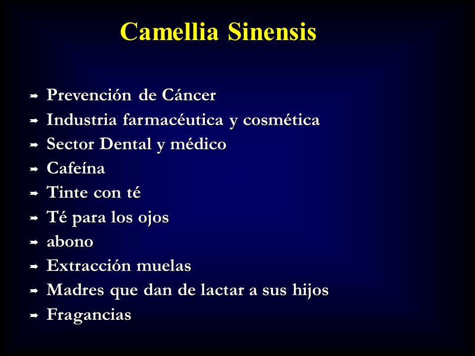 Prevención de Cáncer Prevención de Cáncer Industria farmacéutica y cosmética Industria farmacéutica y cosmética Sector Dental y médico Sector Dental y