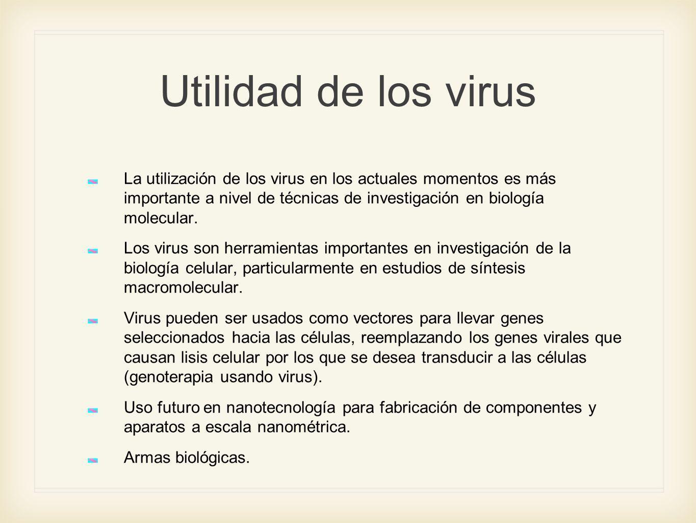 Utilidad de los virus La utilización de los virus en los actuales momentos es más importante a nivel de técnicas de investigación en biología molecula