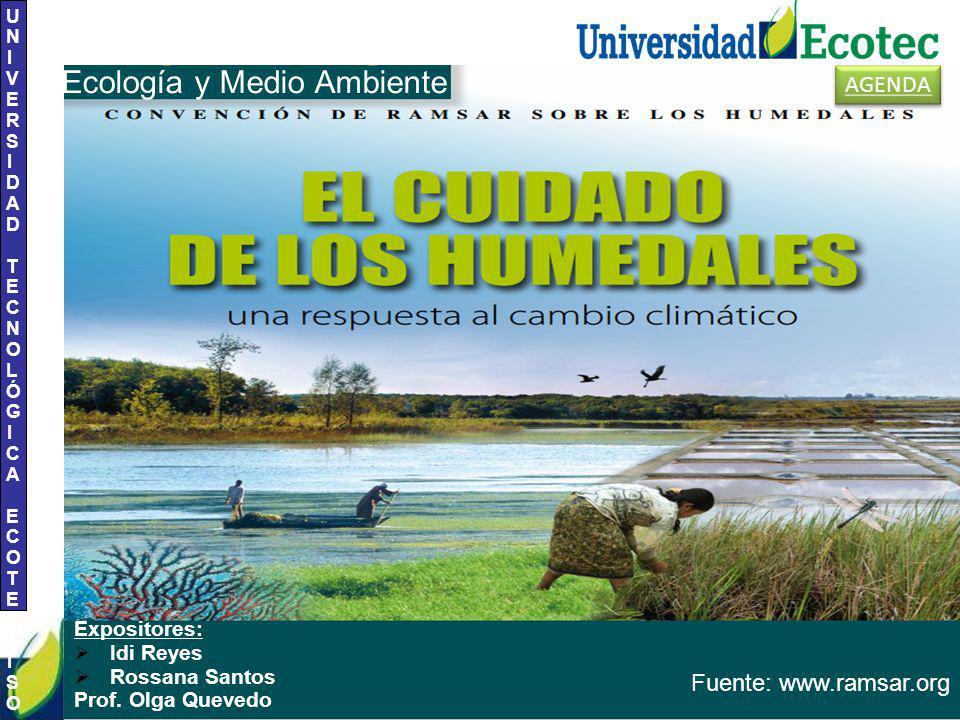 UNIVERSIDAD TECNOLÓGICA ECOTEC.ISO 9001:2008 UNIVERSIDAD TECNOLÓGICA ECOTEC.ISO 9001:2008 Expositores: Idi Reyes Rossana Santos Prof.