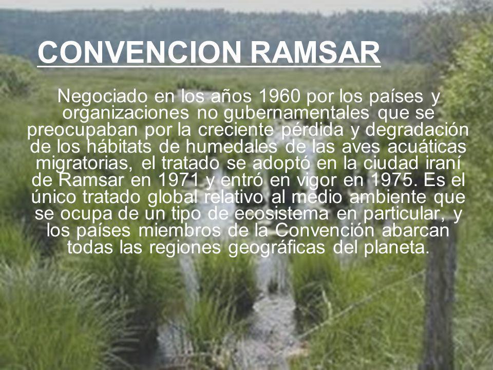 UNIVERSIDAD TECNOLÓGICA ECOTEC.ISO 9001:2008 UNIVERSIDAD TECNOLÓGICA ECOTEC.ISO 9001:2008 CONVENCION RAMSAR Negociado en los años 1960 por los países y organizaciones no gubernamentales que se preocupaban por la creciente pérdida y degradación de los hábitats de humedales de las aves acuáticas migratorias, el tratado se adoptó en la ciudad iraní de Ramsar en 1971 y entró en vigor en 1975.