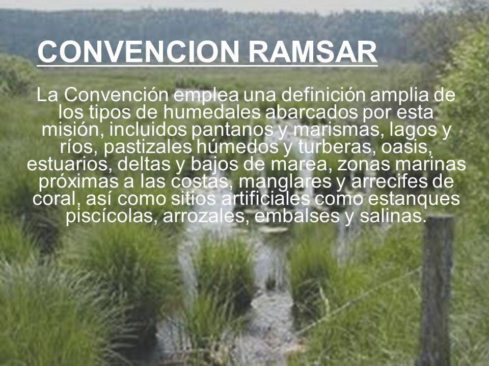 UNIVERSIDAD TECNOLÓGICA ECOTEC.ISO 9001:2008 UNIVERSIDAD TECNOLÓGICA ECOTEC.ISO 9001:2008 CONVENCION RAMSAR La Convención emplea una definición amplia de los tipos de humedales abarcados por esta misión, incluidos pantanos y marismas, lagos y ríos, pastizales húmedos y turberas, oasis, estuarios, deltas y bajos de marea, zonas marinas próximas a las costas, manglares y arrecifes de coral, así como sitios artificiales como estanques piscícolas, arrozales, embalses y salinas.