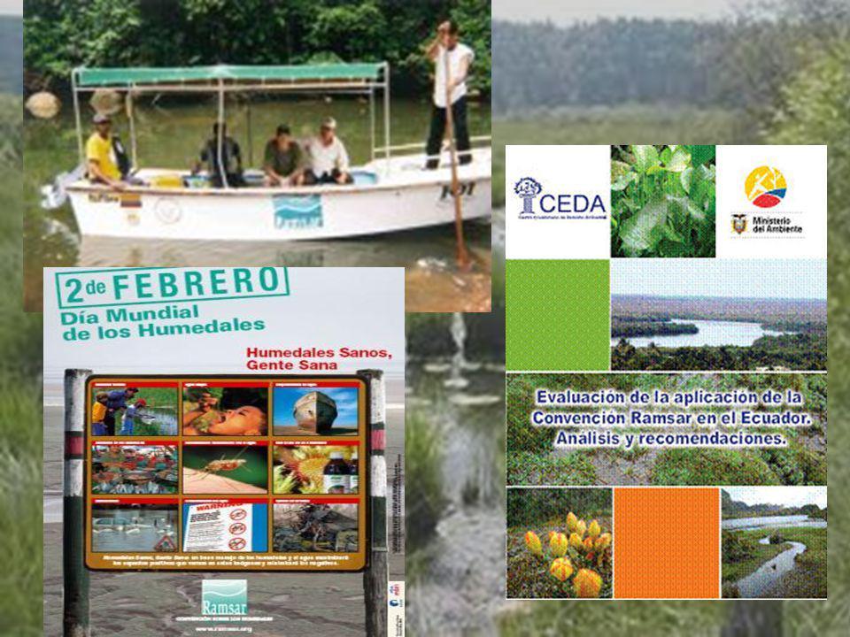 UNIVERSIDAD TECNOLÓGICA ECOTEC.ISO 9001:2008 UNIVERSIDAD TECNOLÓGICA ECOTEC.ISO 9001:2008