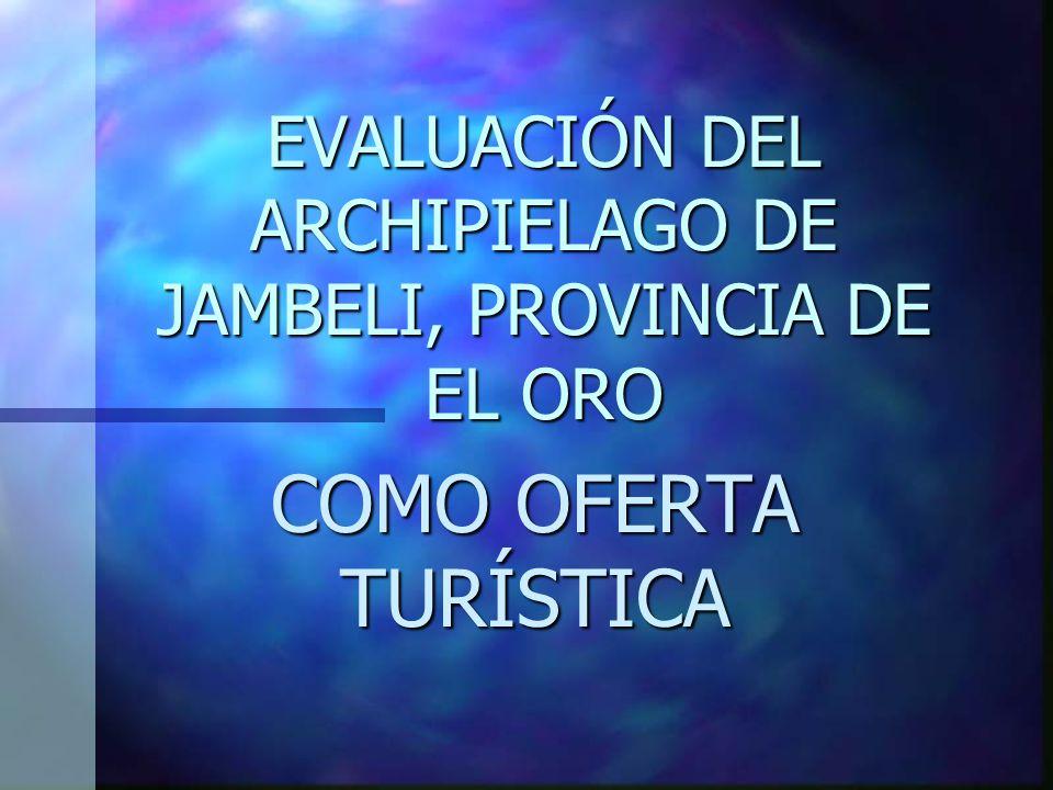 PROYECTOS Y PLANES M.T.