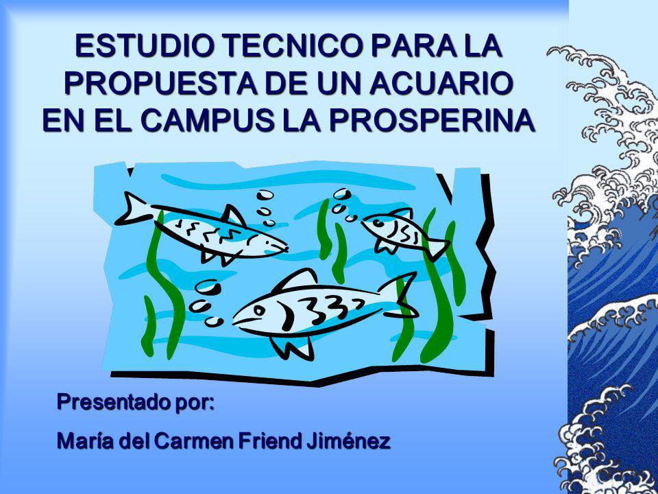 ESTUDIO TECNICO PARA LA PROPUESTA DE UN ACUARIO EN EL CAMPUS LA PROSPERINA Presentado por: María del Carmen Friend Jiménez